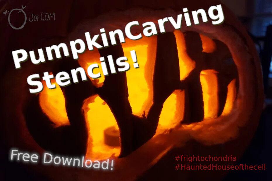 Pumpkin Carving Stencils! Free Download!